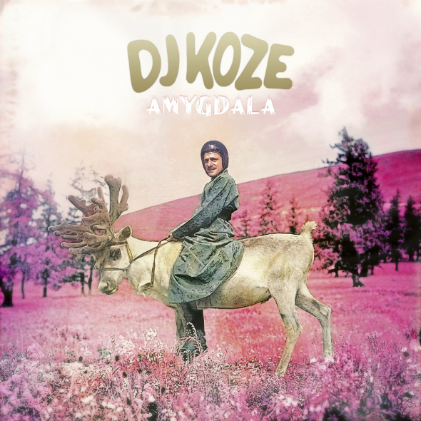 DJ-KOZE-AMYGDALA